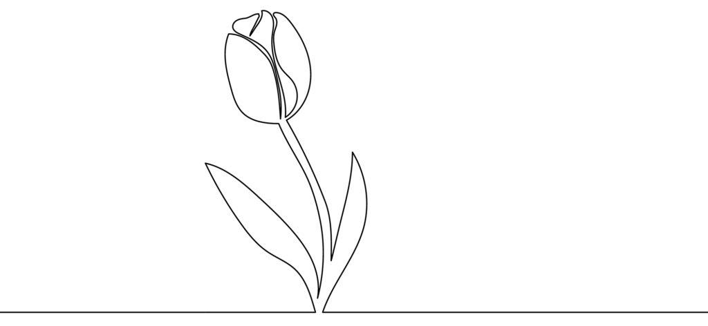 rose scribble